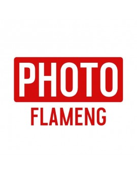 Photo Flameng
